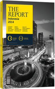 Cover of The Report: Indonesia 2014