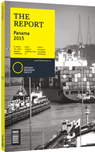 Cover of The Report: Panama 2015